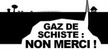 gazde-schiste-2-300x130